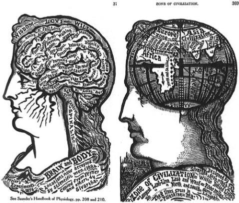 vintage brain picture